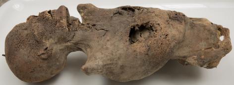 [19e-eeuwse mummie uit de Collectie Gerechtelijke Geneeskunde (foto: Benn Deceun