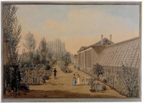 Tekening van de Orangerie van de Plantentuin in het park van de voormalige Baudelooabdij (Collectie Universiteitsarchief Gent).