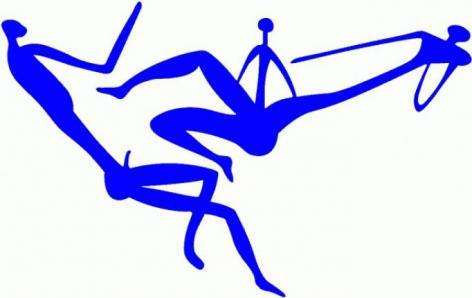 Logo van het International Centre for Reproductive Health