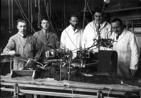 Professor Eugène De Somer (rechts), assistenten en medewerkers tijdens een wetenschappelijke proef met een dier in de eerste helft van de 20ste eeuw (Collectie Universiteitsarchief Gent).