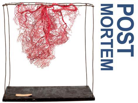 Tentoonstelling Post Mortem. Vesalius tussen kunst en wetenschap