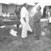 Forensisch geneeskundige Jacques Timperman (in witte schort) aan het werk na de vliegtuigcrash in Aarsele van 1971 waarbij alle 63 passagiers het leven lieten (© vakgroep Gerechtelijke Geneeskunde UGent).